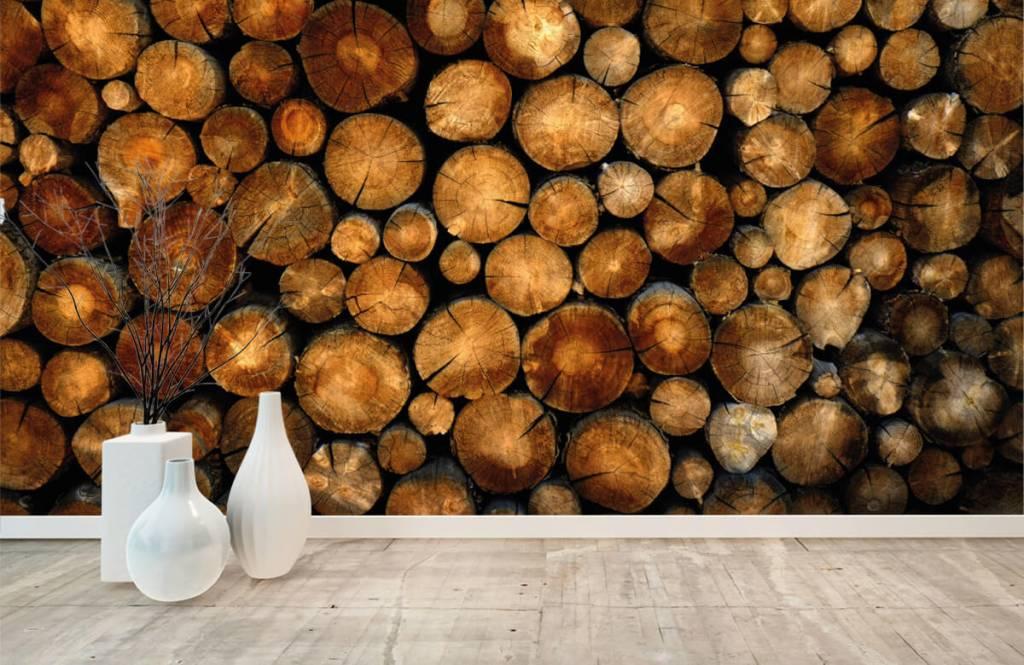 Holz Tapete - abgesägte Bäume - Schlafzimmer 8