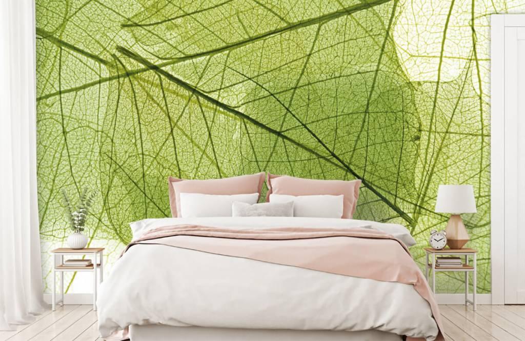 Blätter - Grüne Blätter - Schlafzimmer 2