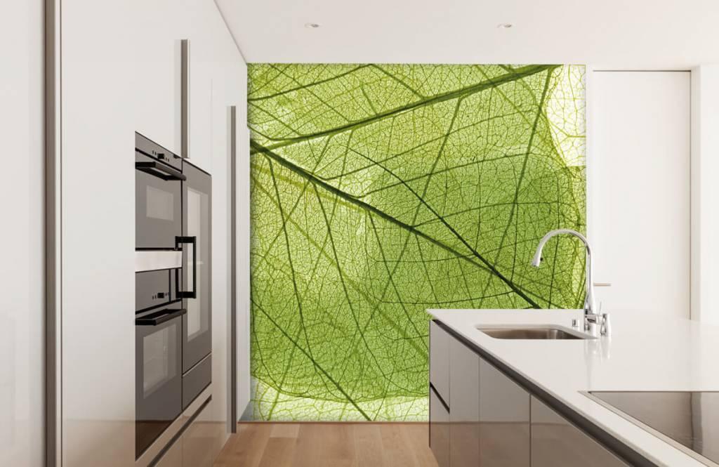 Blätter - Grüne Blätter - Schlafzimmer 3