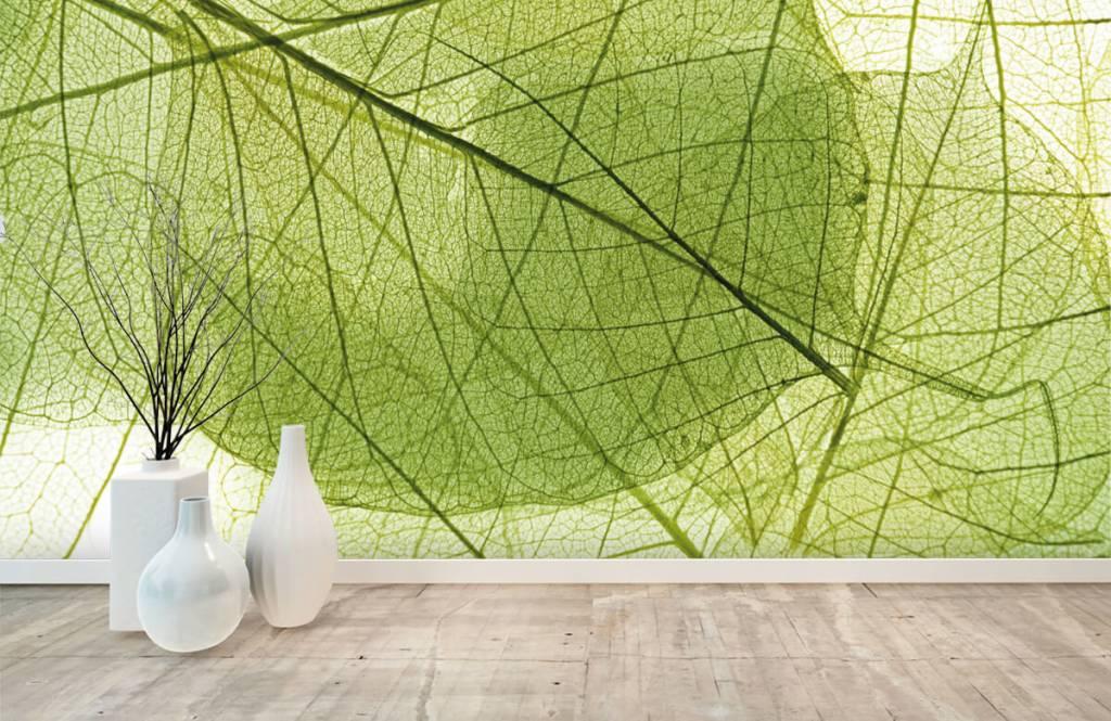 Blätter - Grüne Blätter - Schlafzimmer 5