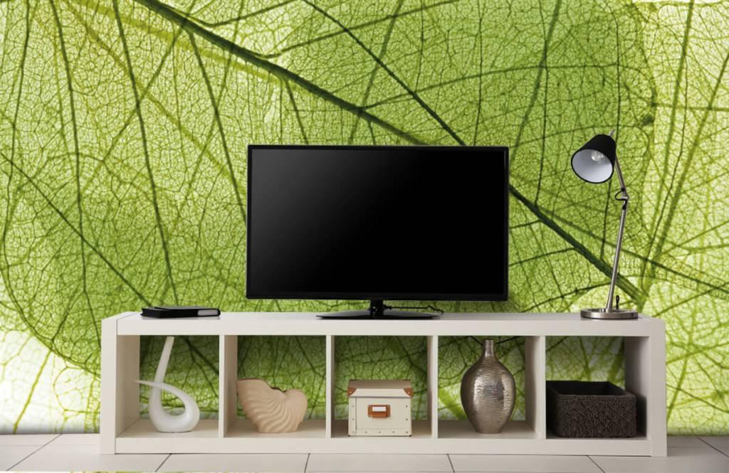 Blätter - Grüne Blätter - Schlafzimmer 6