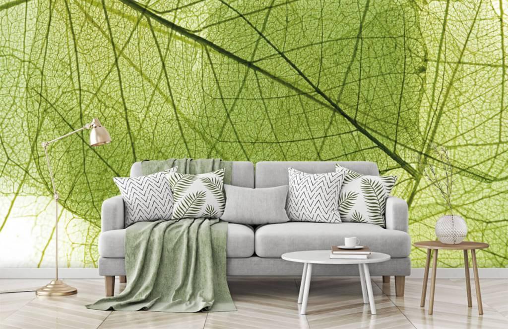 Blätter - Grüne Blätter - Schlafzimmer 8