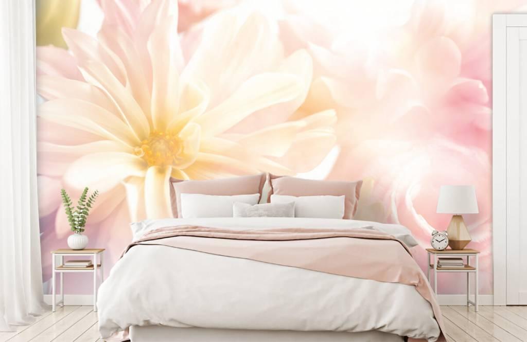 Blumenfelder - Helle Blumen - Schlafzimmer 1