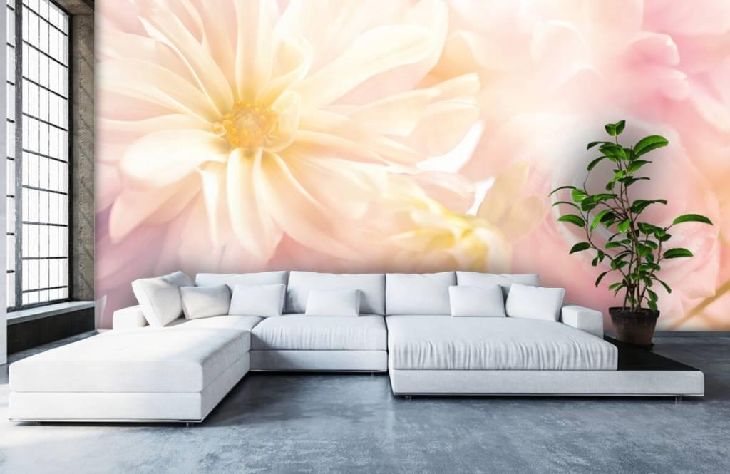 Blumenfelder - Helle Blumen - Schlafzimmer 5