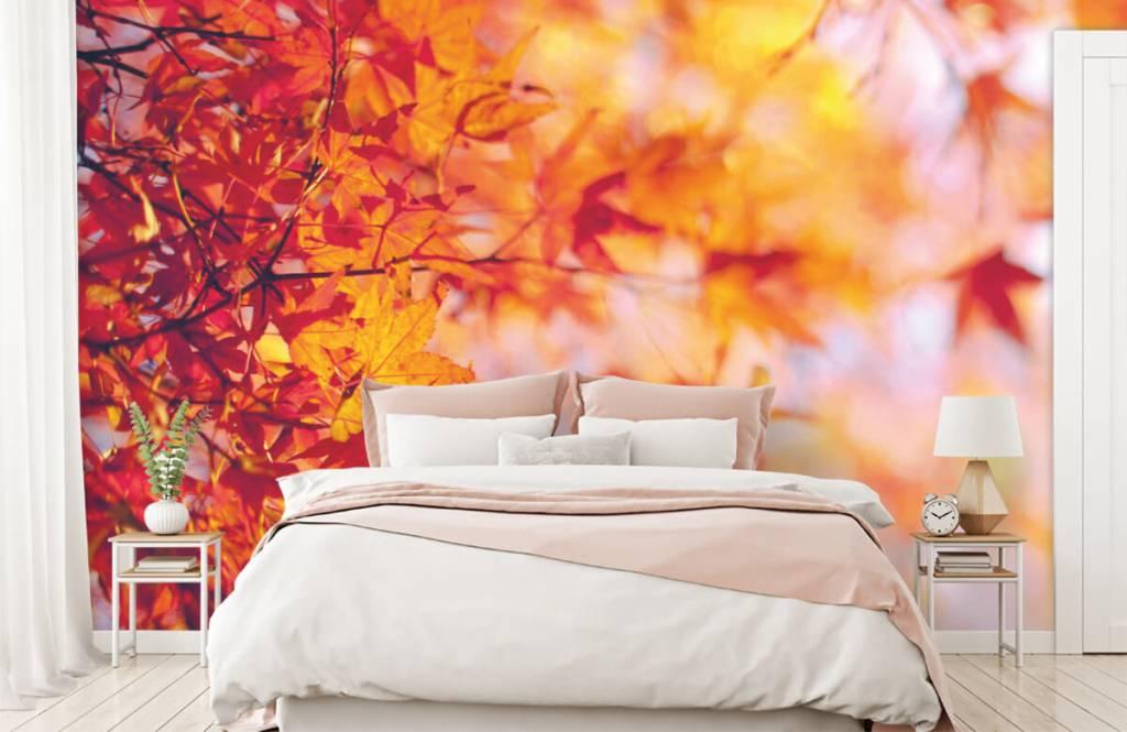 Blätter - Herbstlaub - Schlafzimmer 1