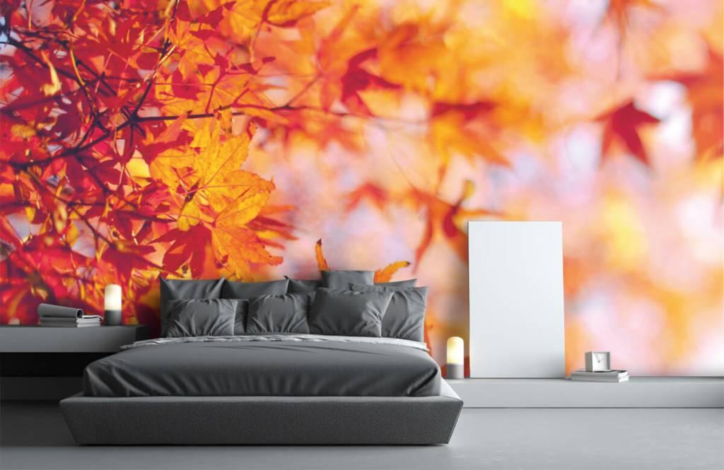 Blätter - Herbstlaub - Schlafzimmer 2