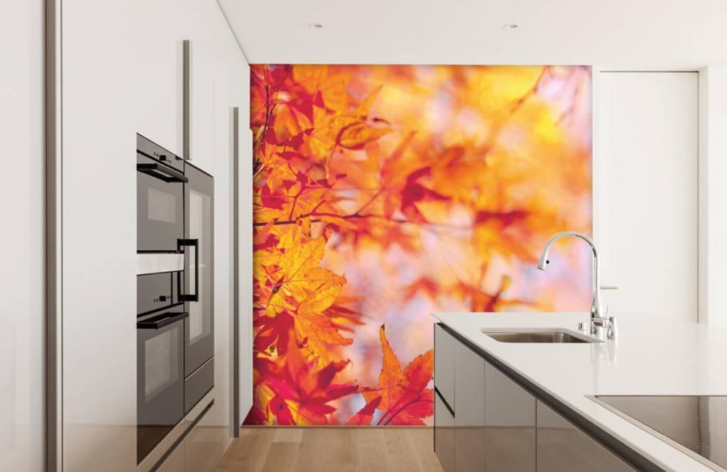 Blätter - Herbstlaub - Schlafzimmer 3