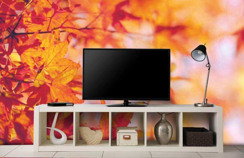 Blätter - Herbstlaub - Schlafzimmer 4