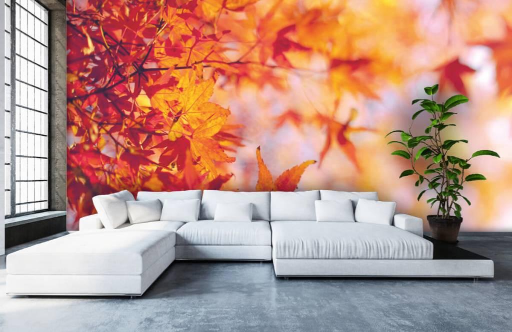 Blätter - Herbstlaub - Schlafzimmer 5