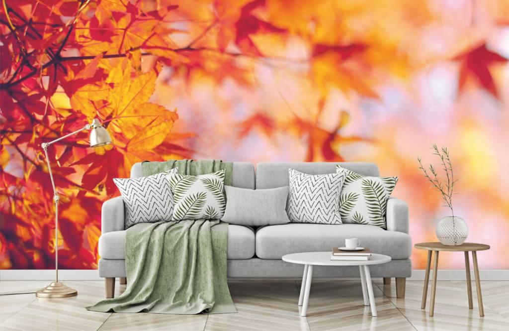 Blätter - Herbstlaub - Schlafzimmer 7