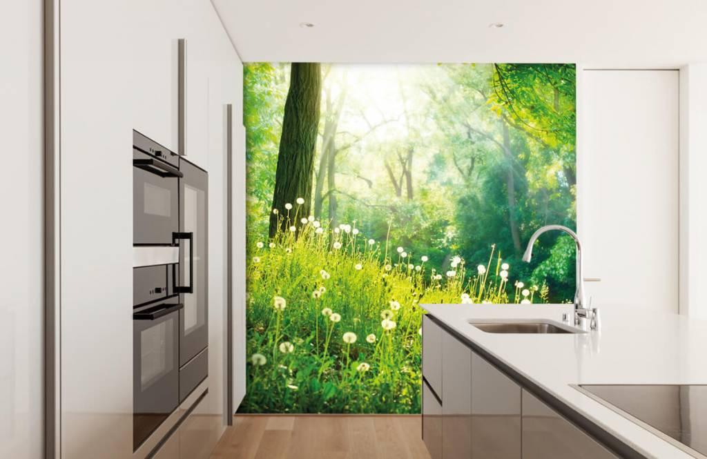 Wald Tapete - Löwenzahn - Schlafzimmer 3