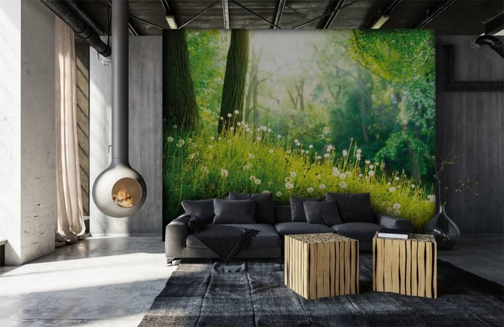 Wald Tapete - Löwenzahn - Schlafzimmer 6