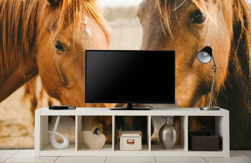 Pferde - Zwei Pferde - Kinderzimmer 3