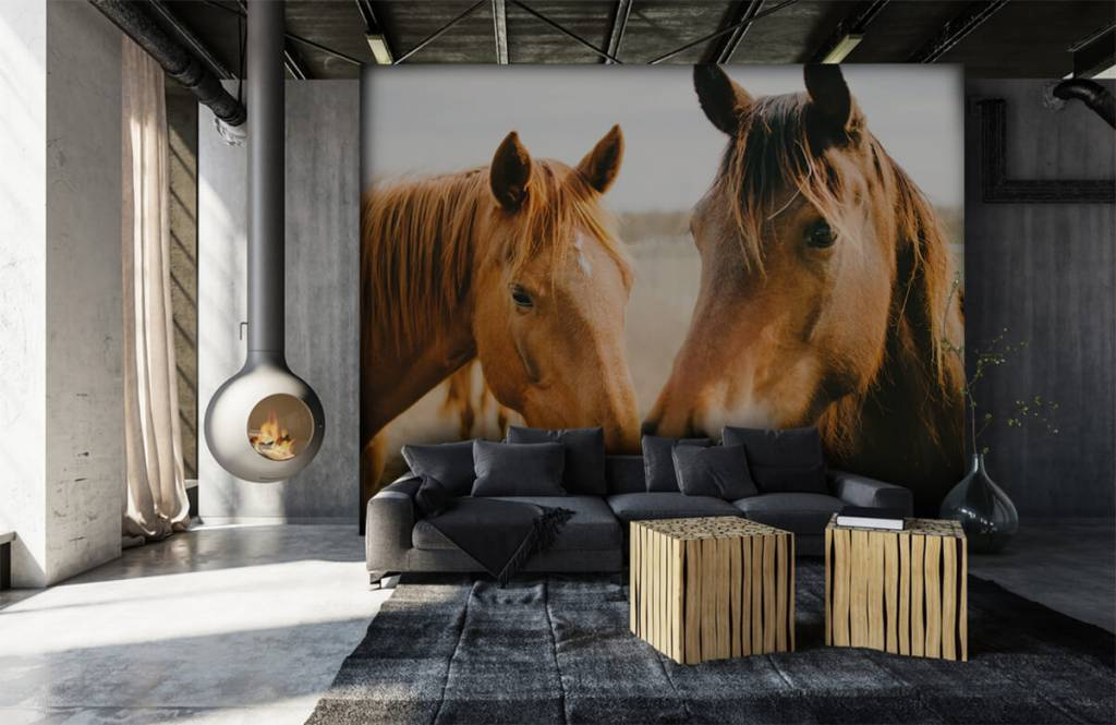 Pferde - Zwei Pferde - Kinderzimmer 6