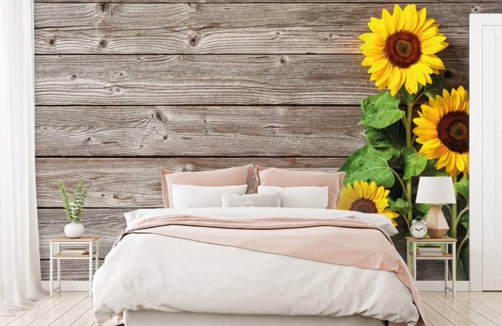 Sonnenblume - Sonnenblumen und Holz - Garage 1