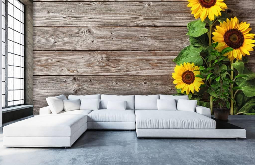 Sonnenblume - Sonnenblumen und Holz - Garage 5