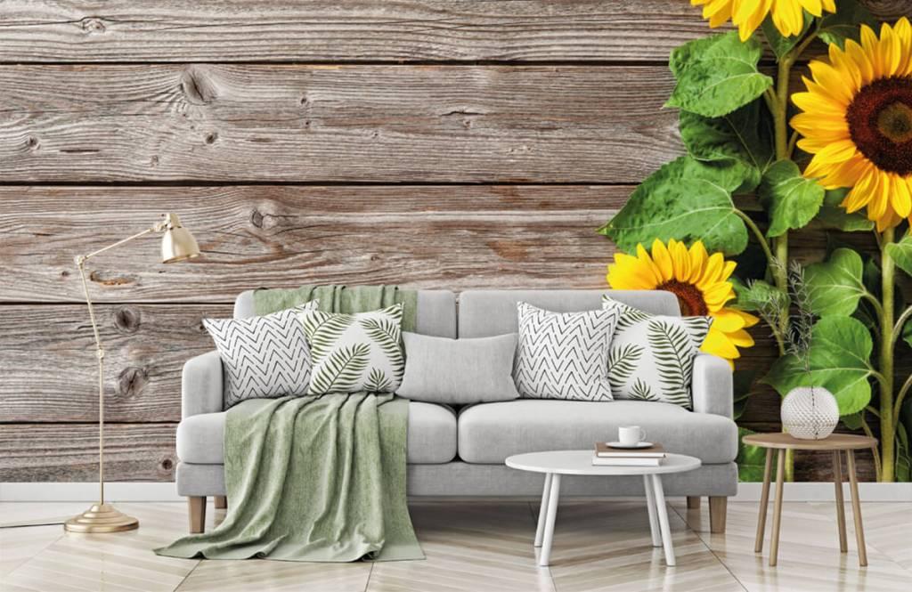 Sonnenblume - Sonnenblumen und Holz - Garage 7