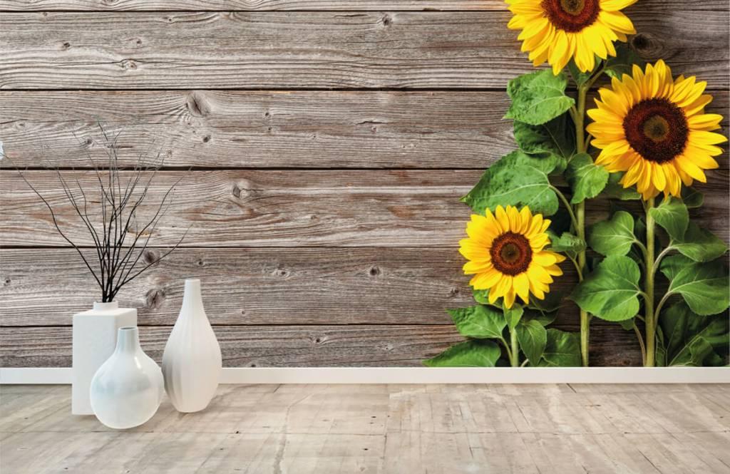 Sonnenblume - Sonnenblumen und Holz - Garage 8