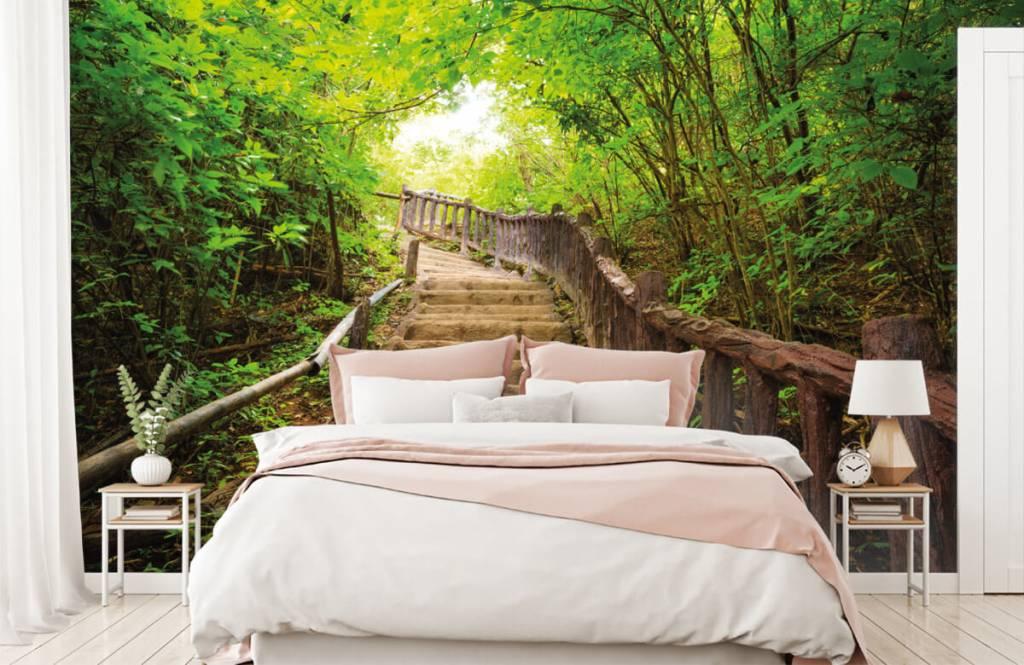Wald Tapete - Treppen im Wald - Schlafzimmer 2