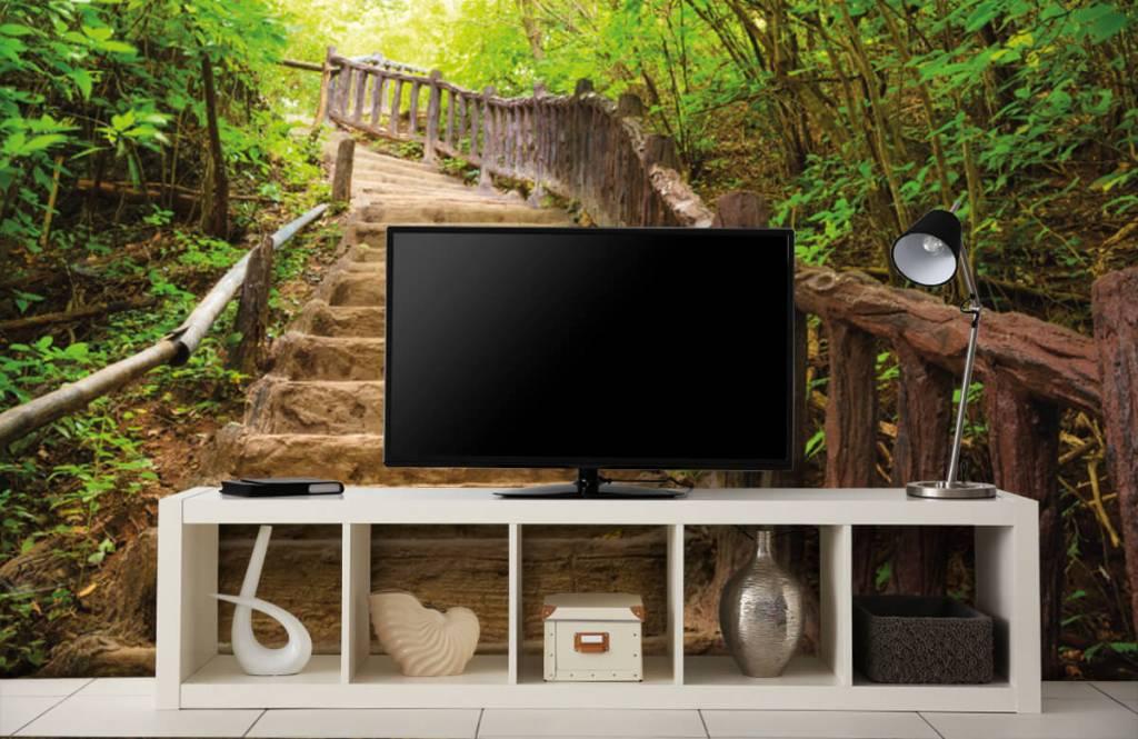 Wald Tapete - Treppen im Wald - Schlafzimmer 4