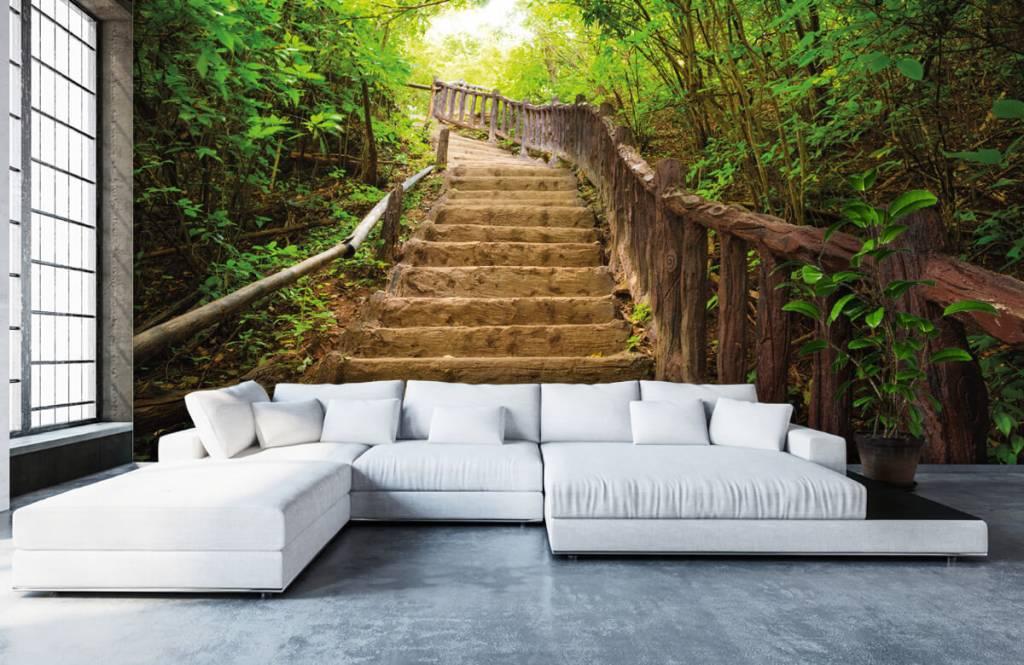 Wald Tapete - Treppen im Wald - Schlafzimmer 5