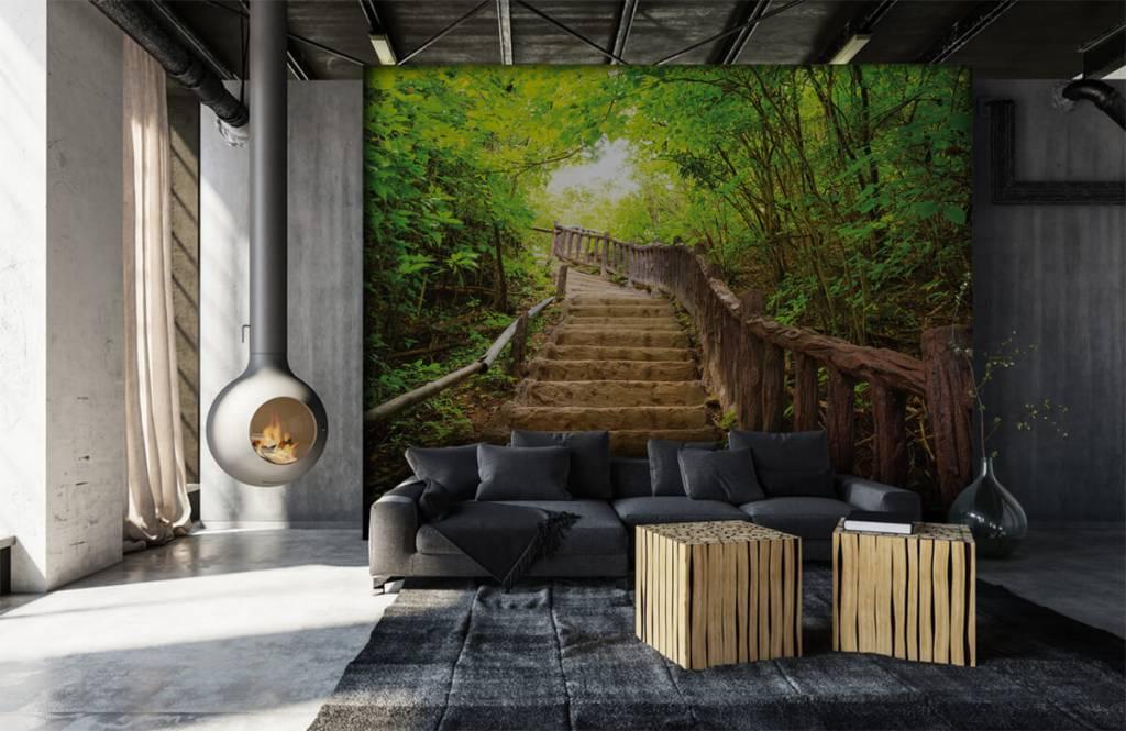 Wald Tapete - Treppen im Wald - Schlafzimmer 6