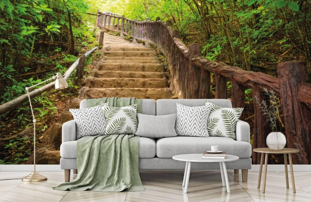 Wald Tapete - Treppen im Wald - Schlafzimmer 7