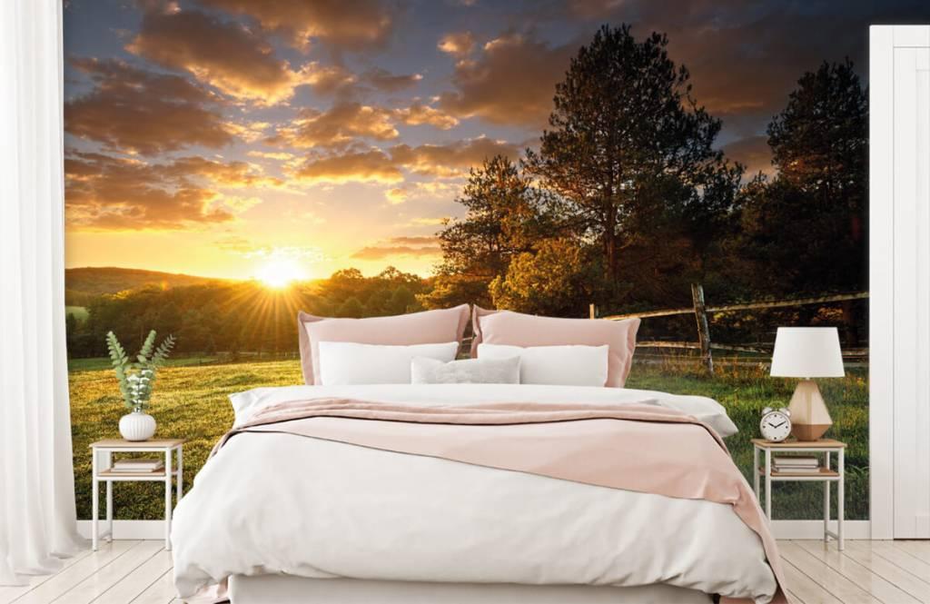 Landschafts Tapete - Weide mit Sonnenuntergang - Schlafzimmer 2