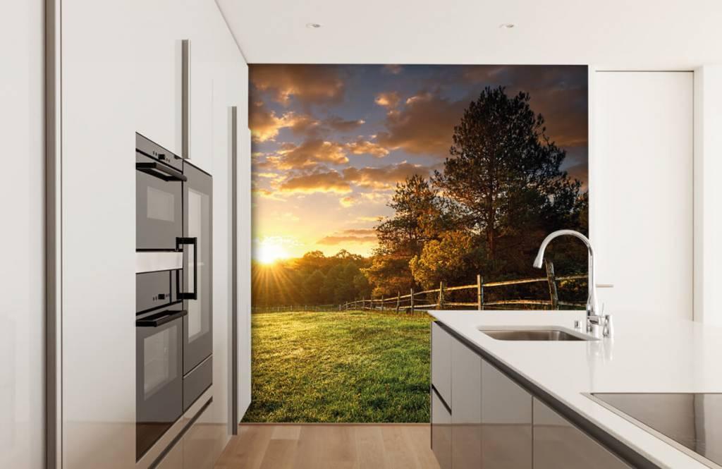 Landschafts Tapete - Weide mit Sonnenuntergang - Schlafzimmer 3