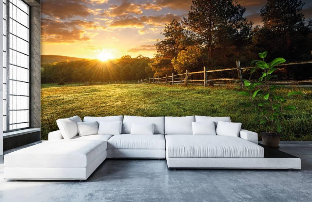 Landschafts Tapete - Weide mit Sonnenuntergang - Schlafzimmer 5