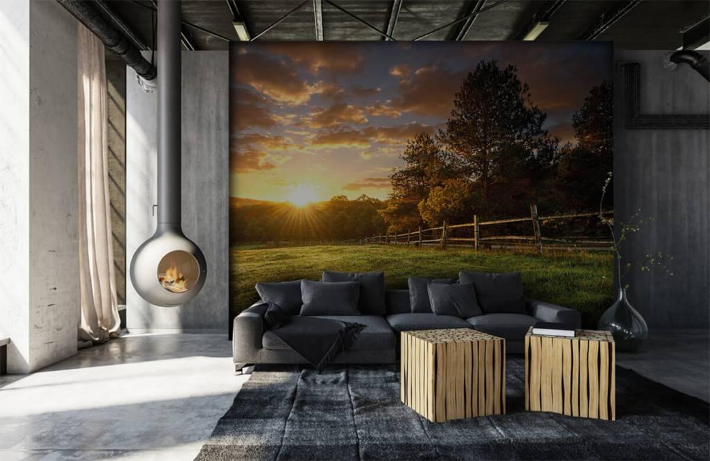 Landschafts Tapete - Weide mit Sonnenuntergang - Schlafzimmer 6