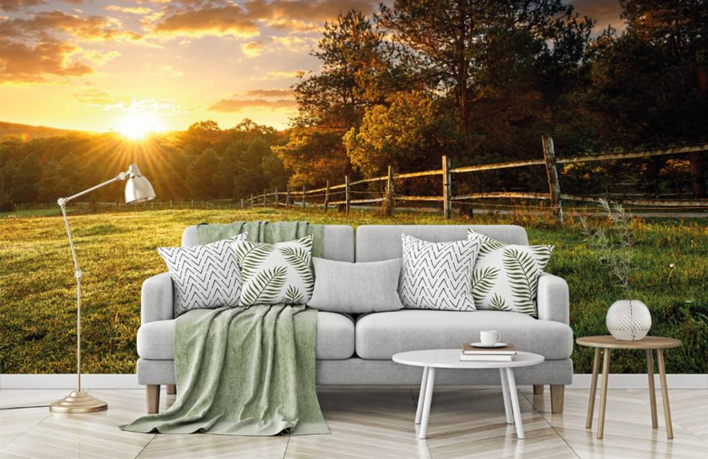 Landschafts Tapete - Weide mit Sonnenuntergang - Schlafzimmer 7