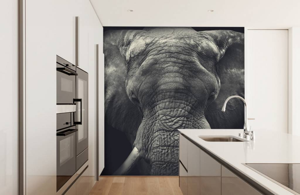 Elefanten - Elefant-Nahaufnahme - Schlafzimmer 3