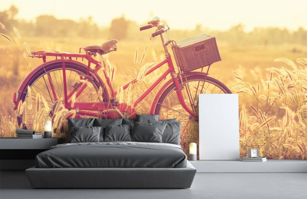 Landschafts Tapete - Vintage Fahrrad - Schlafzimmer 2