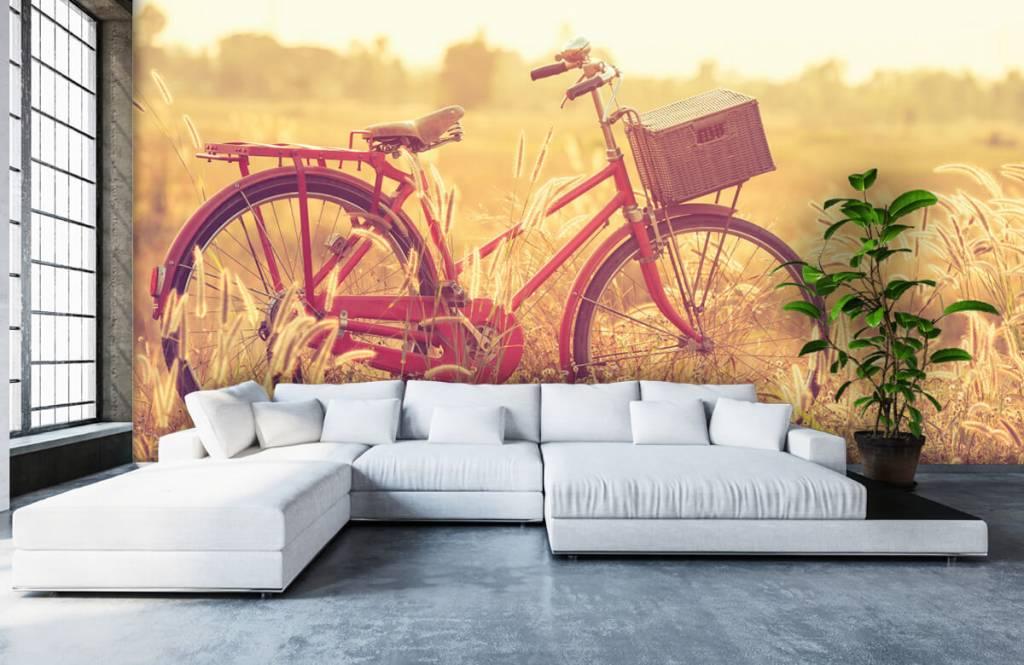 Landschafts Tapete - Vintage Fahrrad - Schlafzimmer 5