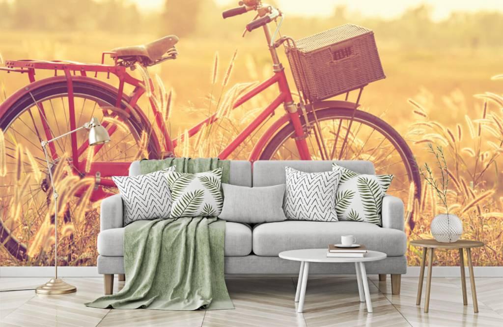 Landschafts Tapete - Vintage Fahrrad - Schlafzimmer 7