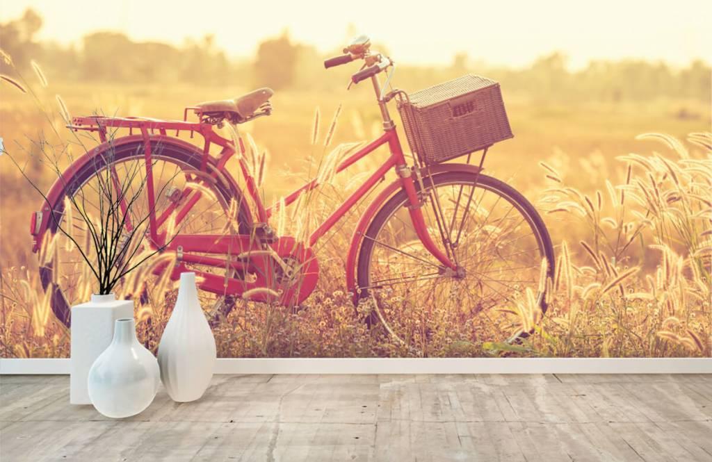 Landschafts Tapete - Vintage Fahrrad - Schlafzimmer 8